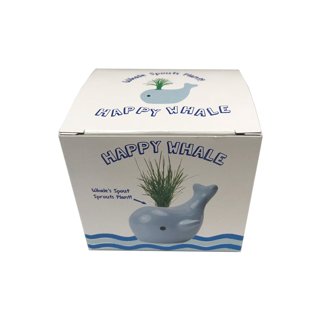Happy Whale Grass Growing Kit