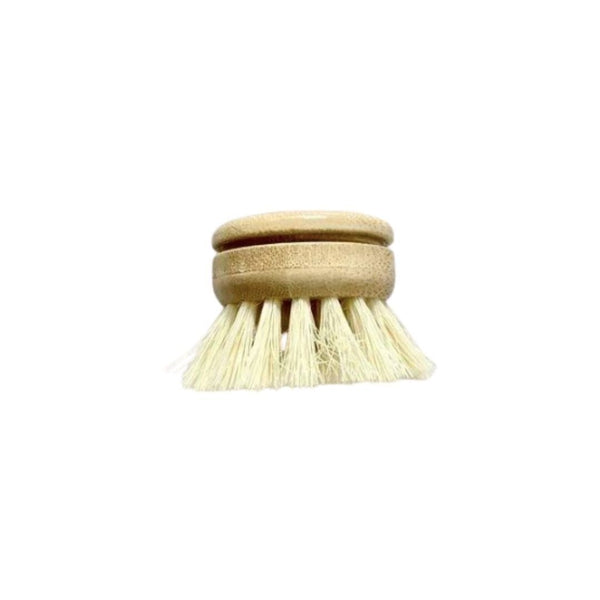 100% Compostable Dish Brush Head Replacement by Essence of Life