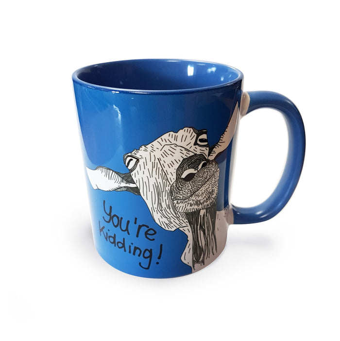 You're Kidding! Mug