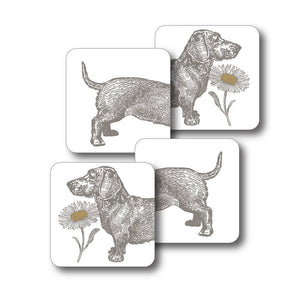 Dog and Daisy Coaster Set of 4