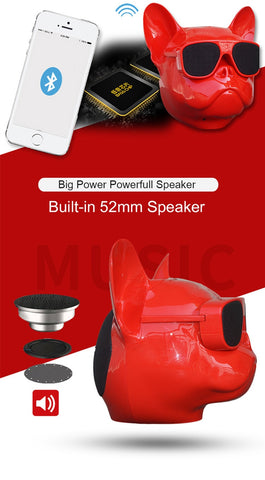 Wireless Bluetooth Speaker for Ipod/Smartphone