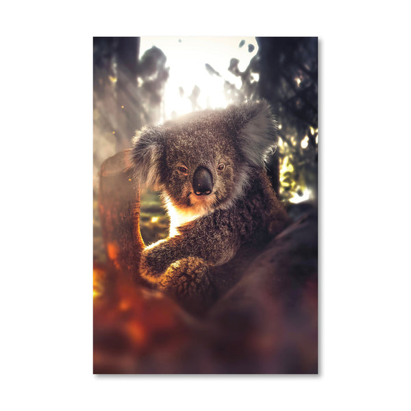 Friendly Koala Canvas Art Clock Canvas