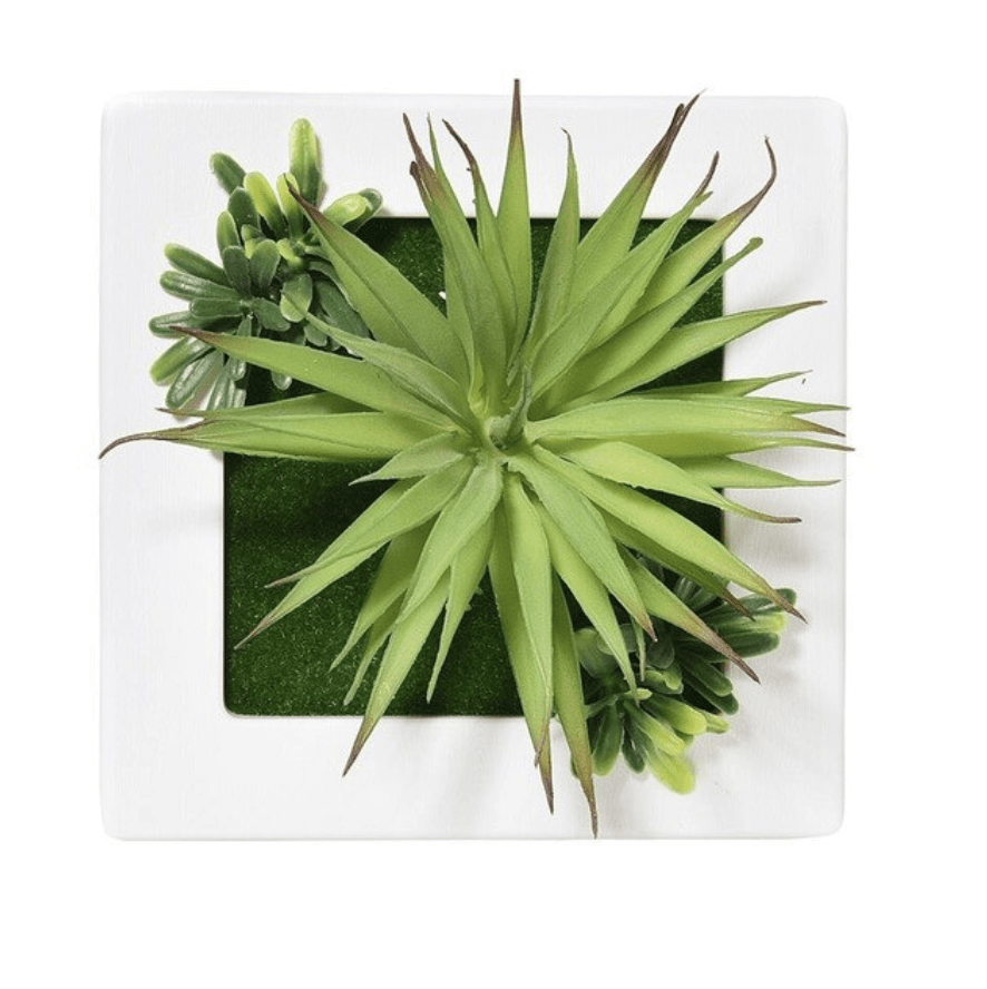 Wall Plants A Clock Canvas