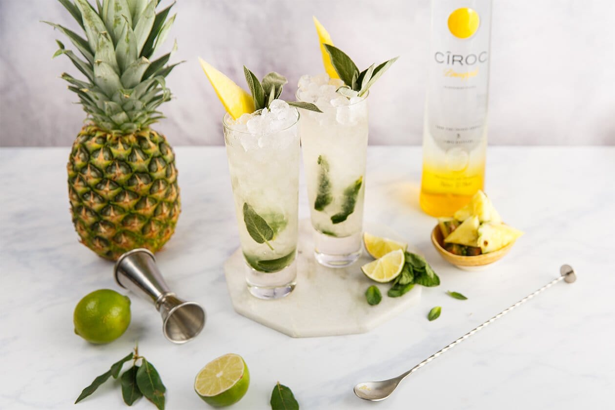 16 Ciroc Cocktails & What to Mix