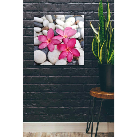 Epic Art 'Shintai II' Acrylic Glass Wall Art