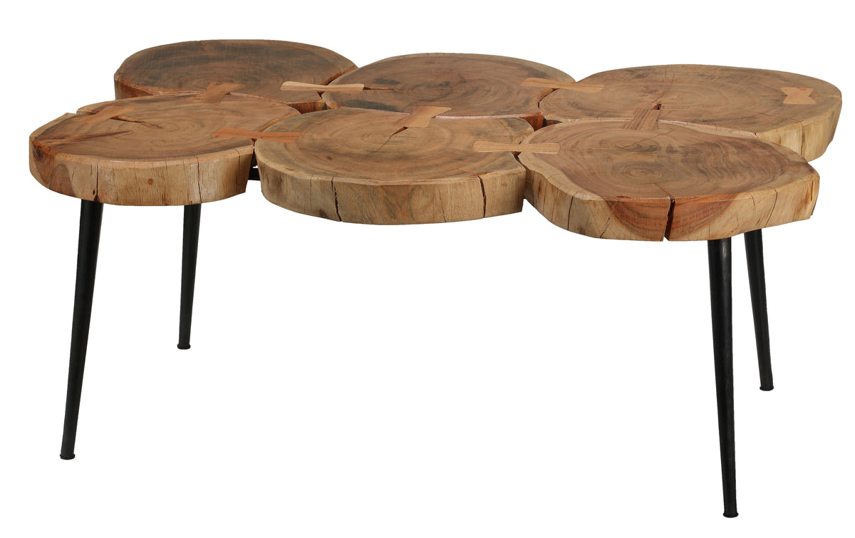 Bare Decor Tucker Metal and Wood Coffee Table