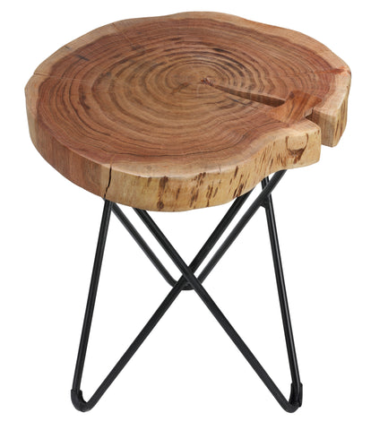 Image of Bare Decor Sawyer Metal and Wood End Table