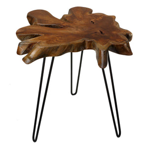 Bare Decor Evan Accent End Table with Solid Teak Root Top