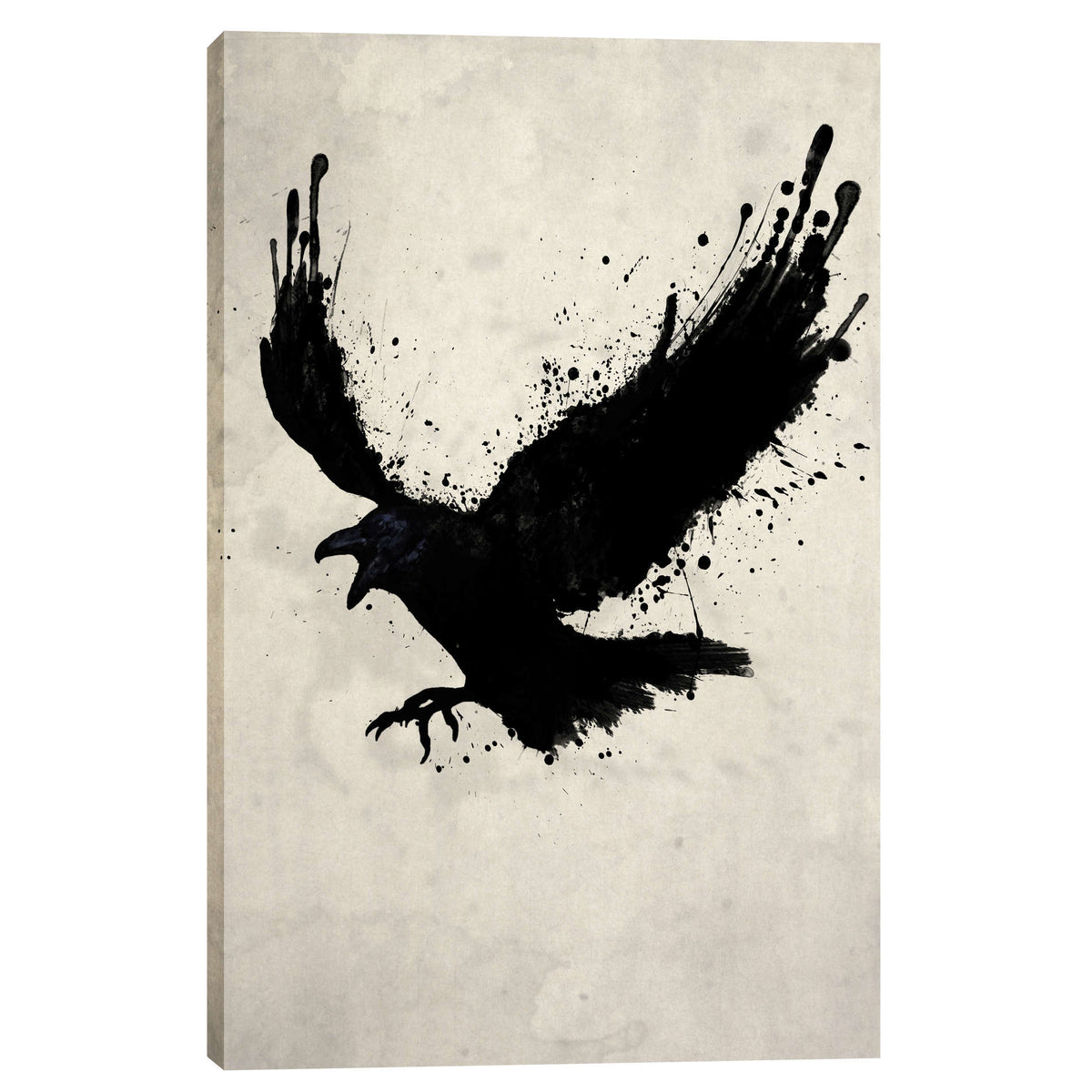 Cortesi Home 'Raven' by Nicklas Gustafsson, Canvas Wall Art