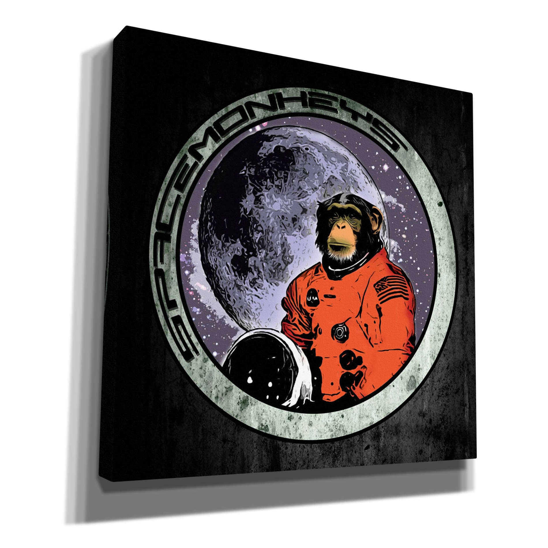 "Cortesi Home ""Space Monkeys"" by Nicklas Gustafsson, Giclee Canvas Wall Art"