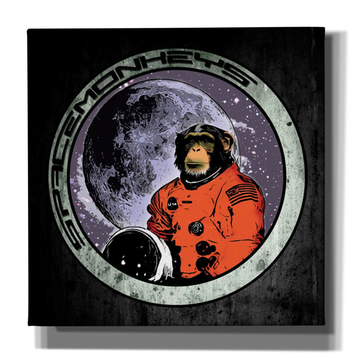 Cortesi Home 'Space Monkeys' by Nicklas Gustafsson, Canvas Wall Art