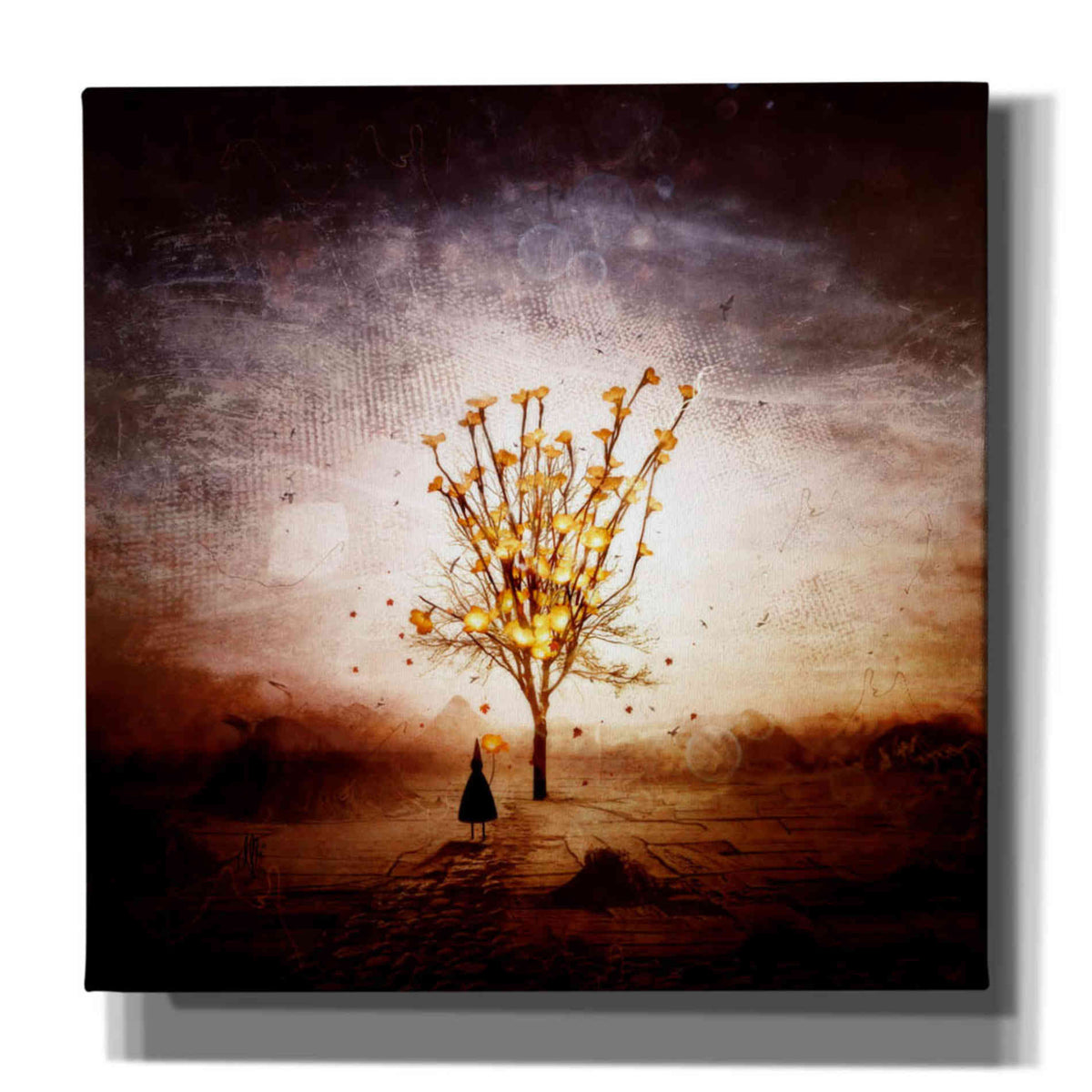 Cortesi Home 'Finding' by Mario Sanchez Nevado, Canvas Wall Art,Size 1 Square