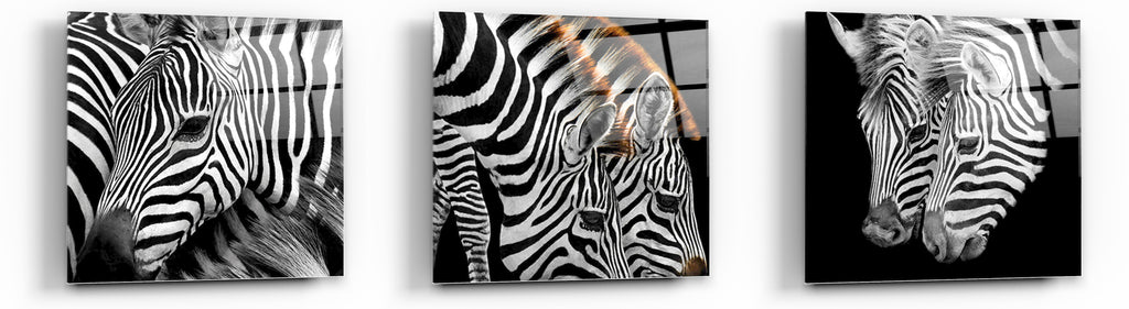 "Cortesi Home Zebra Stripes Tempered Glass Wall Art, 12"" x 12"" (Set of 3)"