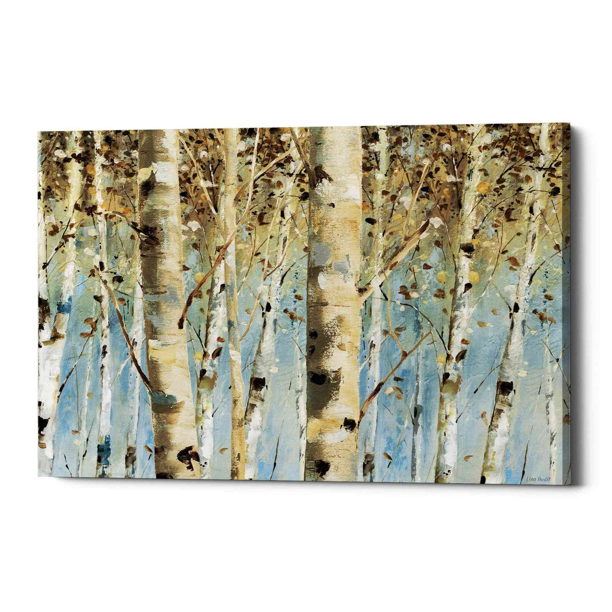 Epic Graffiti 'White Forest' by Lisa Audit, Canvas Wall Art,
