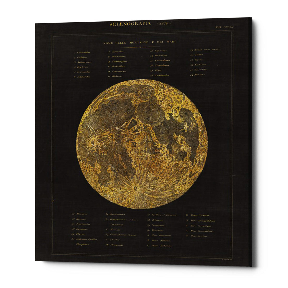 "Epic Graffiti ""Astronomical Chart I"" by Wild Apple Portfolio, Giclee Canvas Wall Art, 12""x16"""