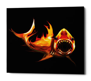 "Epic Graffiti ""White Shark"" by Michael Stewart, Giclee Canvas Wall Art, 12""x16"""