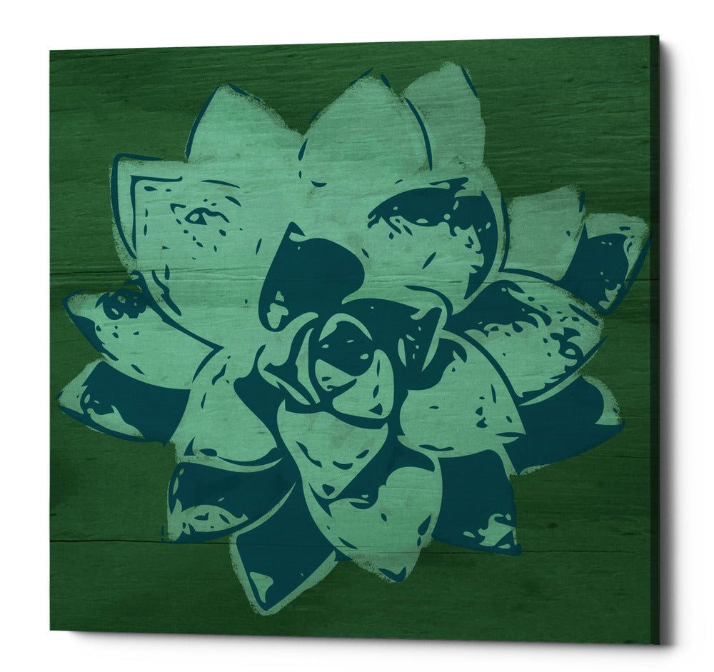 "Epic Graffiti ""Boho Succulent Green"" by Linda Woods, Giclee Canvas Wall Art, 18""x18"""
