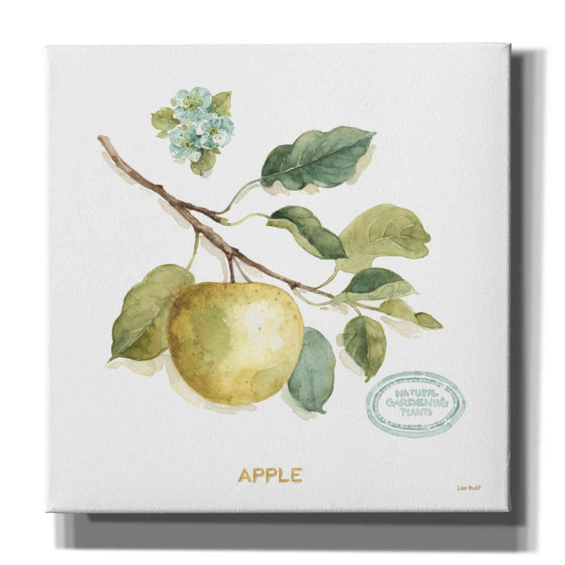 Epic Graffiti 'My Greenhouse Fruit IV' by Lisa Audit, Canvas Wall Art