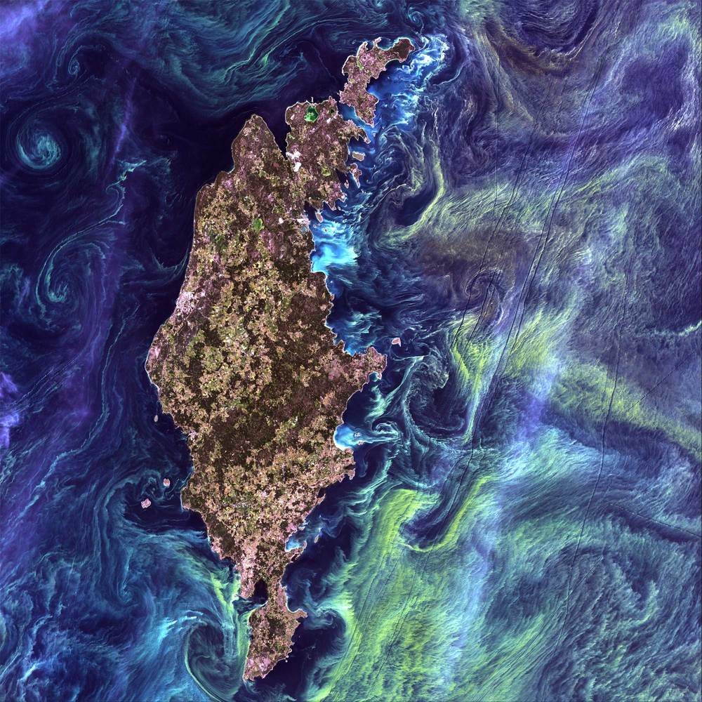 "Epic Graffiti ""Earth As Art: Van Gogh From Space"" Giclee Canvas Wall Art"