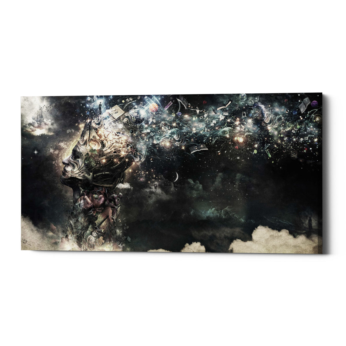 "Epic Graffiti ""Coma"" by Cameron Gray, Giclee Canvas Wall Art"