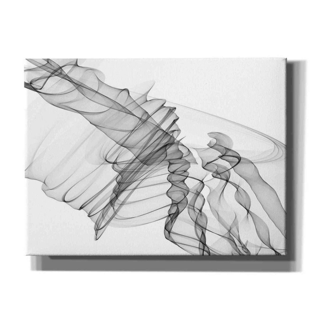 Epic Graffiti 'Abstract Black and White 19-22-36' by Irena Orlov, Giclee Canvas Wall Art