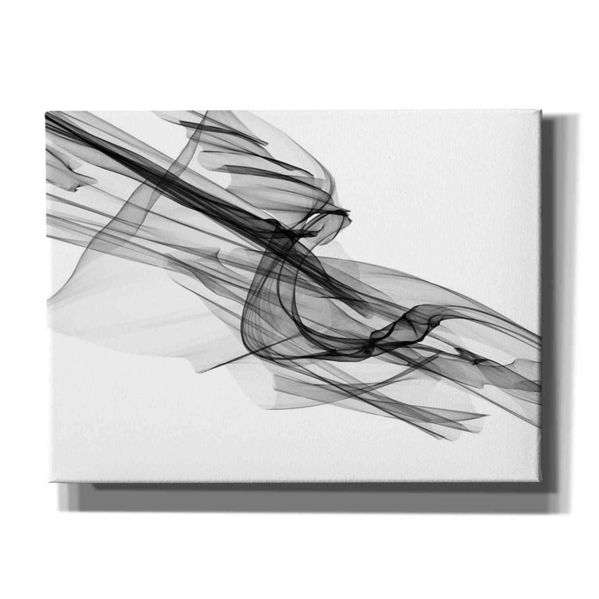Epic Graffiti 'Abstract Black and White 19-48' by Irena Orlov, Giclee Canvas Wall Art
