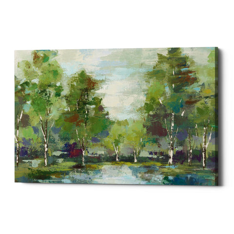 "Epic Graffiti ""Forest At Dawn"" by Silvia Vassileva, Giclee Canvas Wall Art"