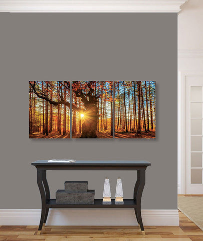 "Image of Epic Graffiti ""Into The Woods"" Acrylic Wall Art, 42"" x 20"""