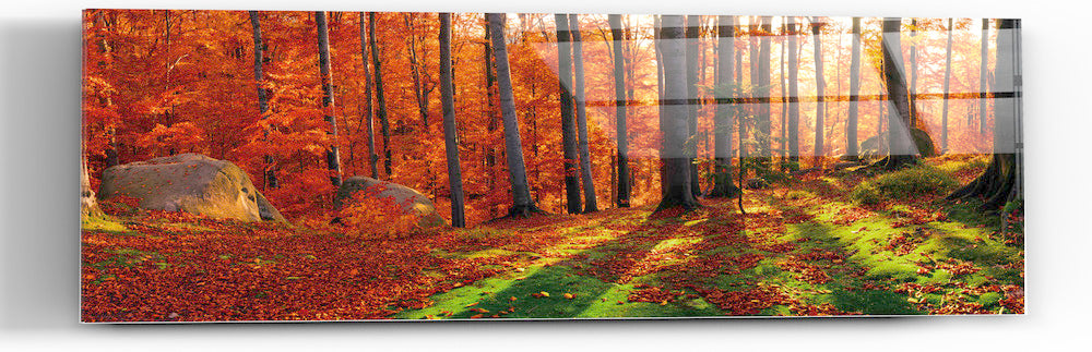 "Epic Graffiti ""Into The Woods"" in a High Gloss Acrylic Wall Art, 60"" x 20"""