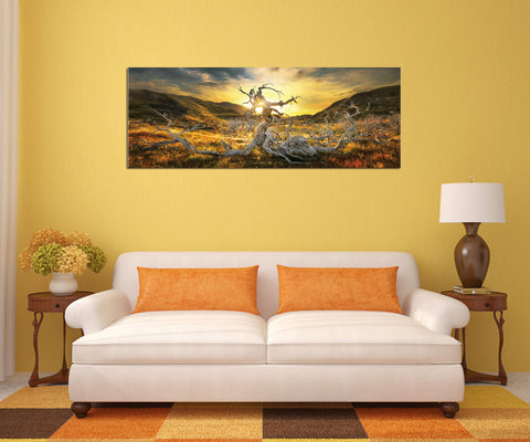"Epic Graffiti ""Dame of the Desert"" in a High Gloss Acrylic Wall Art, 60"" x 20"""