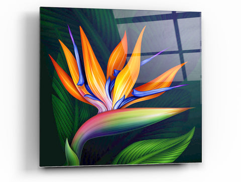 "Epic Graffiti Flower of Paradise Acrylic Wall Art, 24"" x 24"""