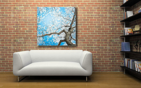 "Image of Epic Graffiti ""Overhead Freeze"" on a High Gloss Acrylic Wall Art, 32"" x 32"""