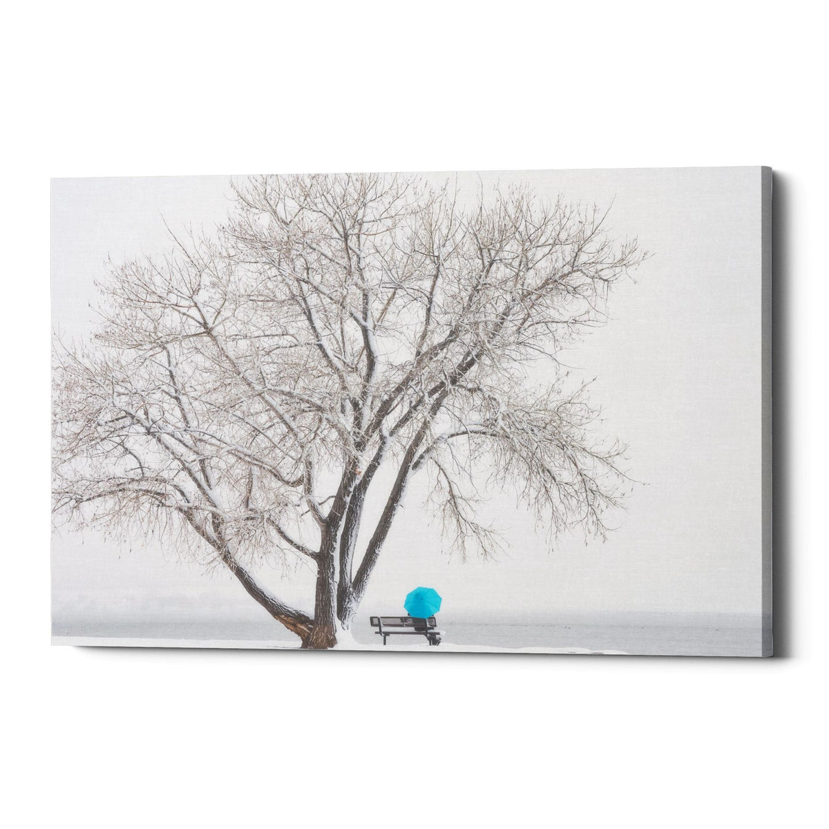 "Epic Graffiti ""Another Winter Alone"" by Darren White, Giclee Canvas Wall Art"