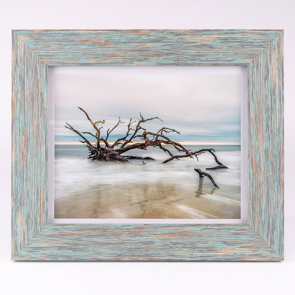 Driftwood Beach 8x10 Fine Art Photograph Blue Frame