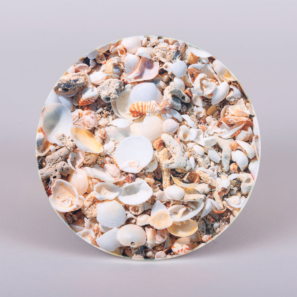 "absorbent round stoneware ""Cluster Seashells"" coasters"