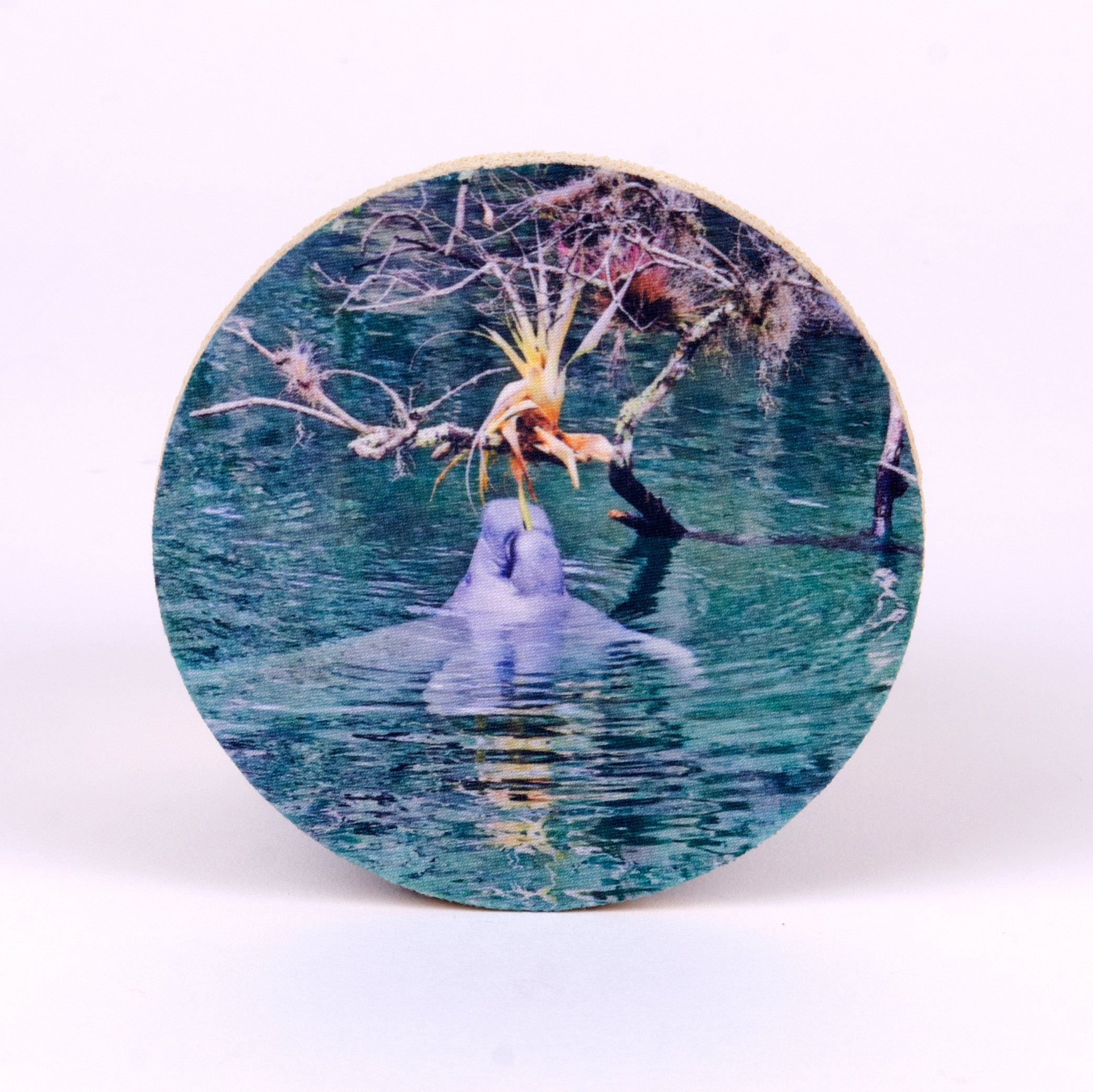 "4"" round rubber coaster with manatee"