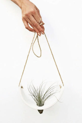 Mudpuppy Hanging Ceramic Air Plant Cradle - White Earthenware Planters