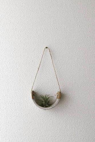 Mudpuppy Small Speckle Buff Hanging Air Plant Cradle - Dipped in Gloss White Glaze Planters