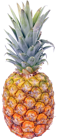 Pineapple sold by La Mater Service, Delivery Service in Cameroon.