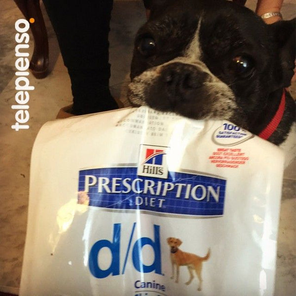 Hill's Prescription Diet Canine d/d Salmón y Arroz
