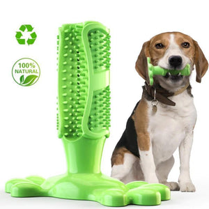 Durable Dog Molar Rod Toothbrush