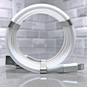 Data Cable with Magnetic Storage