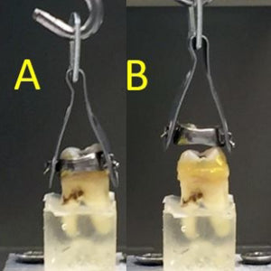 FIRST-EVER REVERSIBLE CEMENT