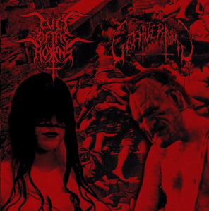 Cult Of The Horns / Goatvermin (CD)