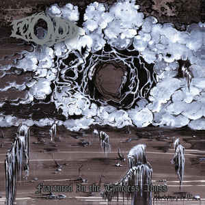 Ectovoid ‎– Fractured In The Timeless Abyss  (CD)