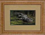 American Alligator Decor Print