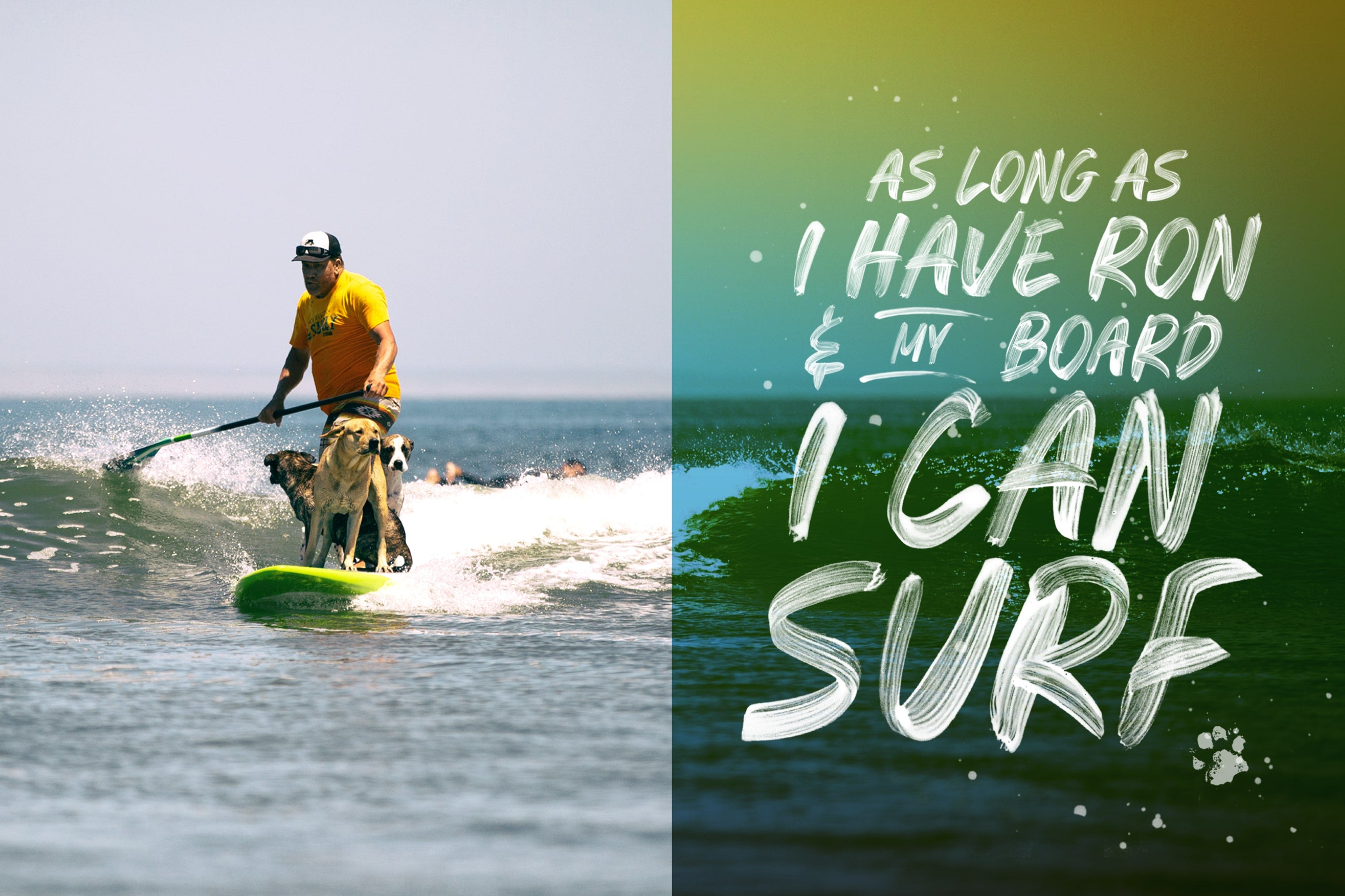 standup paddleboard surfing with dogs