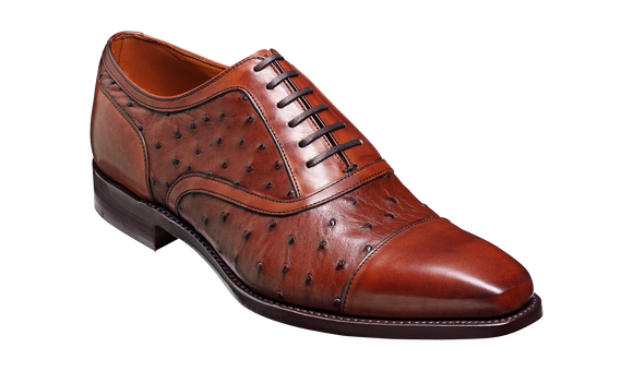 Puccini – Brown Calf / Ostrich
