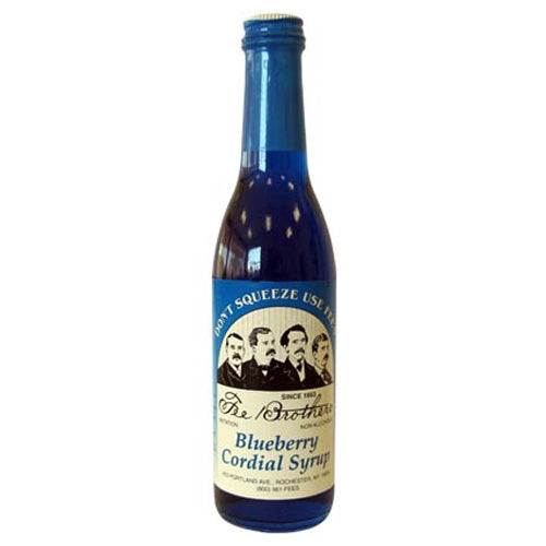 Fee Brothers Blueberry Syrup 375ml