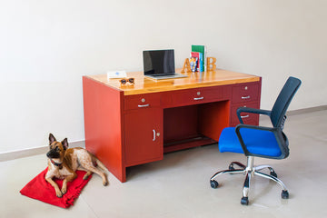 Reclaimed Office Desk